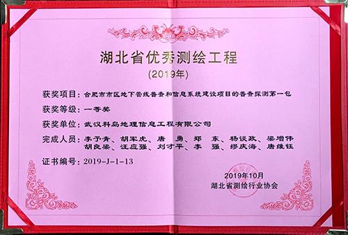 合肥地下管线普查(湖北省优秀测绘工程一等奖)2.jpg